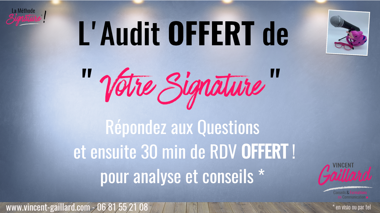 Audit MS
