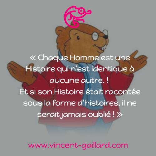 Citation VG 81
