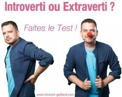Vignette de Test : Introverti ou Extraverti ?